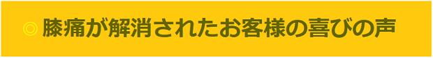 hizatuuyorokobi.png